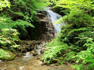 Có hai thác nước dọc theo lối đi, trong hình là thác đực O-taki