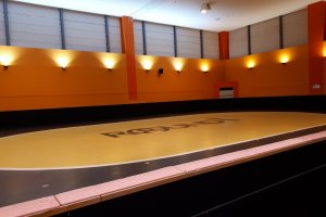 An inline skate and roller skate rink
