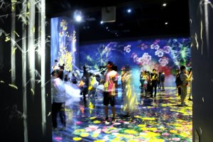 Digital Art Museum TeamLab Borderless