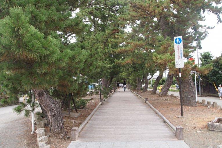 Miho-no-Matsubara(三保の松原)