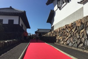 Visitors get a red carpet welcome this year.