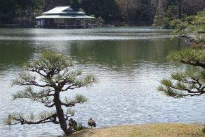 Kiyosumi Teien Garden