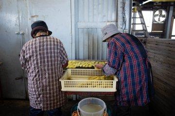 Workers preparing dried sweet potato at Nousanbutsu Kakou Konya