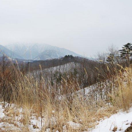 2 Days of Food & Culture in Aizu, Fukushima