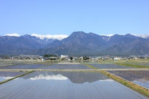 Spring in Ikeda Town