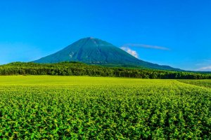 Mt. Yotei in the Shikotsu-Toya National Park, Hokkaido