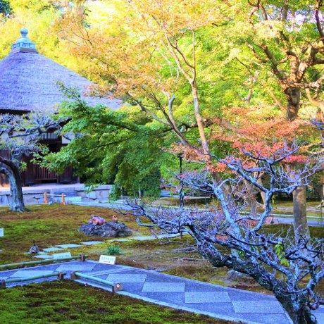 Choju-ji Temple in Kamakura