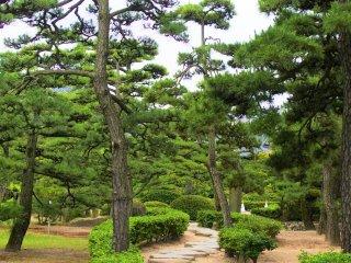 Tasteful Tamamo Park