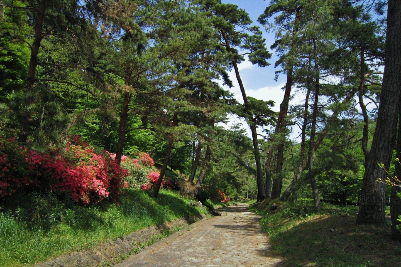 Sentier reliant Tsumago à Magome, Nakasendo