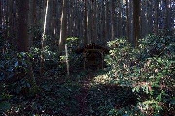 One of the mysterious shrines that make up the Katsuragi 28 Shuku Kyozuka