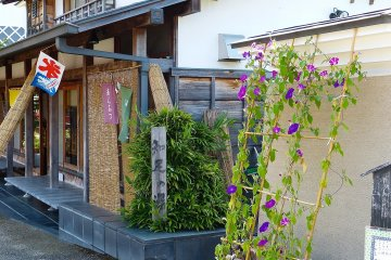 티하우스와 보라색 꽃들