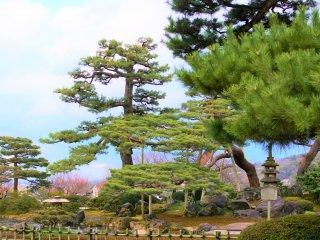 七福神山の風景