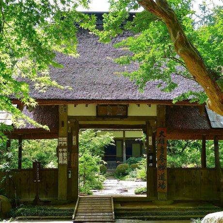 Tochigi Daio-ji Temple in Summer