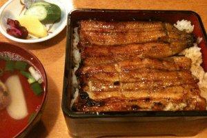 Unagi-don, eel on a bed of rice.