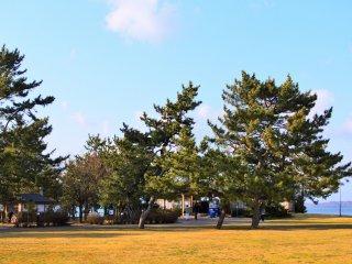 広場の景色