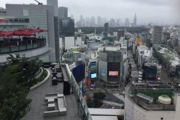 The bustling center of Shibuya