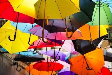 Umbrellas do more than keep the rain away