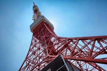 TELL Tokyo Tower Climb