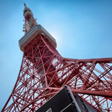 TELL Tokyo Tower Climb [Cancelled]