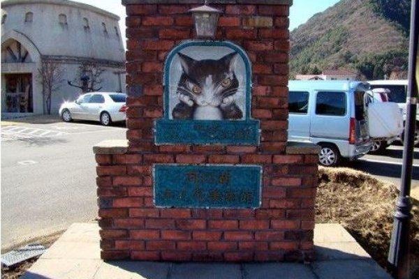 邪恶猫咪的木之花美术馆