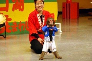 派头十足的猴子亮相!猴子曰:我最帅,我最酷