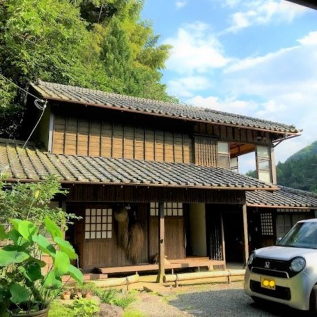 Japanese Green Tea Farmstay