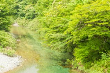 Niyodo river flowing from Mt. Ishizuchi is ranked No. 1 in the domestic water quality ranking