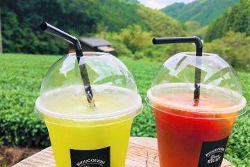 Green-8: Cafe in a Green Tea Field