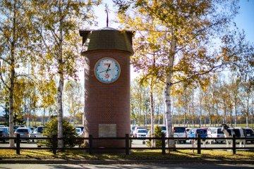 Башня с часами и коровы напротив аэропорта