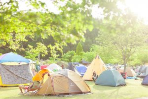 Bring your own tent to camp at the venue