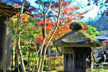 紅葉が美しい一条恵観山荘