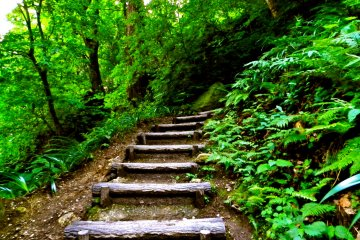 There are dozens of small (and not so small!) sets of steps leading to the summit.