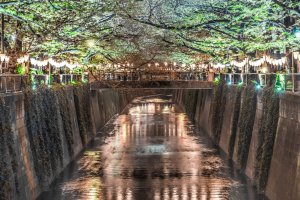 Meguro River Park