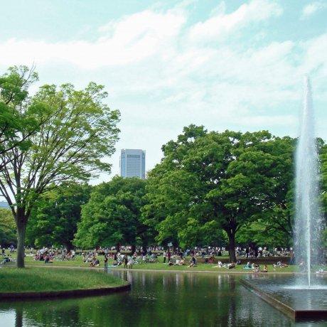 Shibuya City Ward - Parks & Gardens