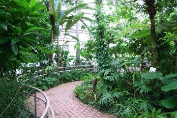 Jindai Botanical Gardens