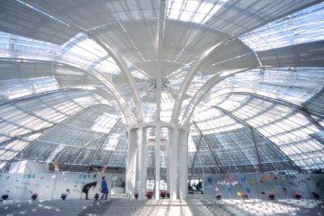 A unique, greenhouse-like structure