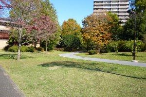 Higashiyamato Park (edited)