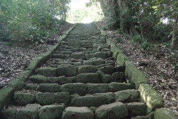 Oiso Hiking Course