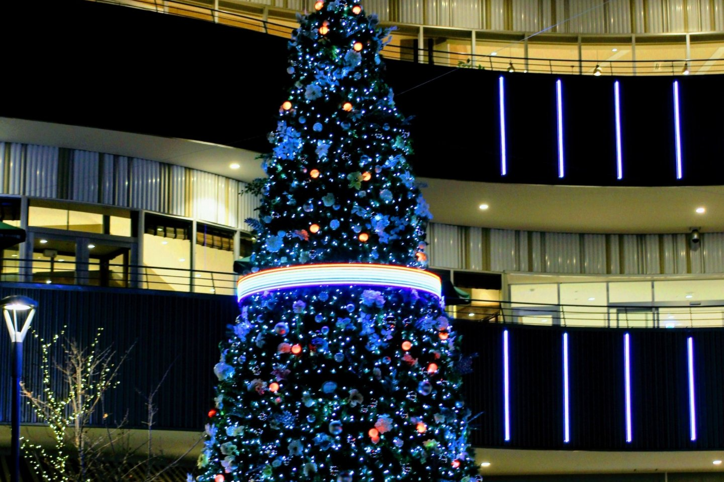 Color changing Christmas Tree at Cocoon City