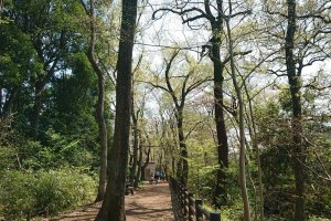 Kodaira Central Park