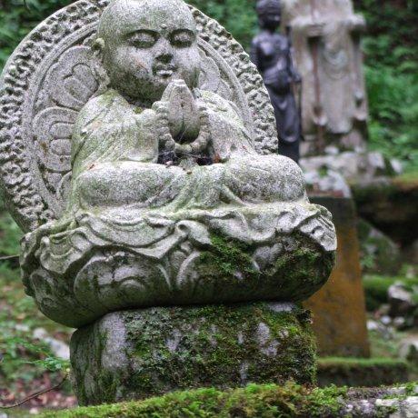 Fukui's Beautiful Eihei-ji Temple