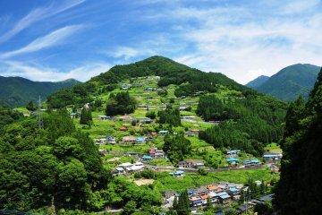 Free Nishi-Awa Virtual Tour: Explore Food, Culture, and Nature!
