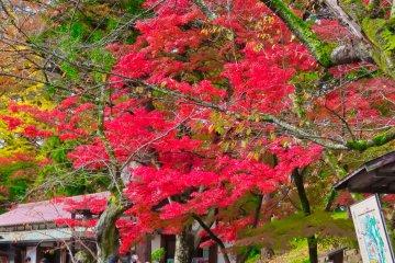 Small shrine at Tsurugajo Castle