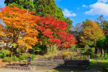 Oyakuen Garden's Herb Garden area