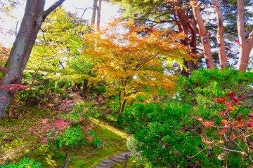 Oyakuen Garden pathway