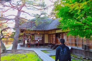 Traditonal Japanese Tea ceremony using special Oyakuen recipe