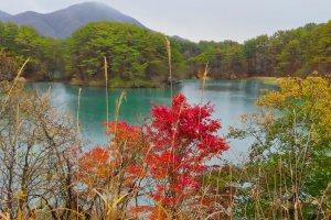 Akanuma Pond