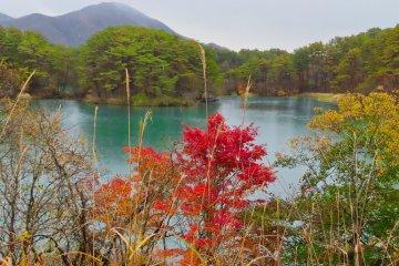 Rediscover Fukushima Prefecture - Day Two