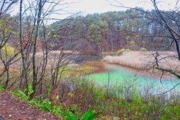 Midoronuma Pond