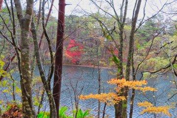 Yanaginuma Pond